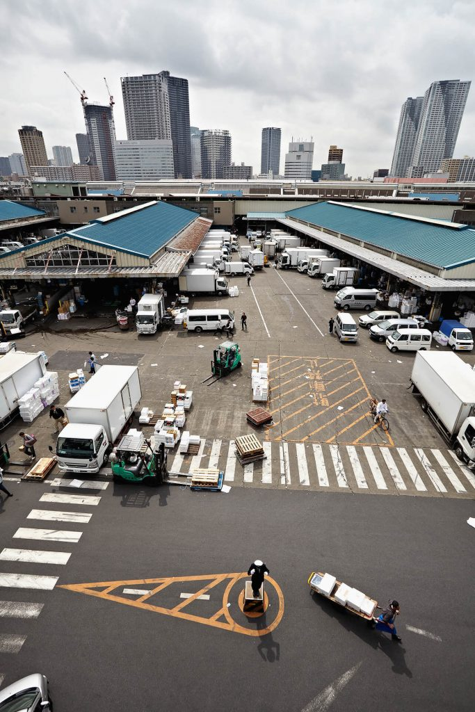 Tokyo Encounter - Tsukiji